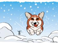 Коржик зимой